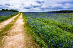 Texas Dirt Road idoso no campo de Texas Bluebonnet Wildflowers fotos de stock