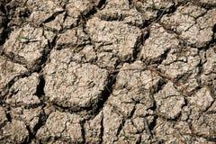 Texas Drought Royalty Free Stock Photo