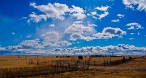 Texas Farm Lands en la lengua de territorio de Tejas Imagen de archivo
