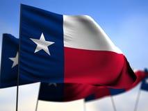 Texas Flag Fotografía de archivo libre de regalías