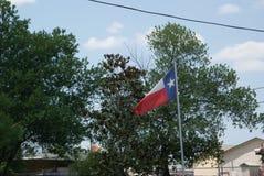 Texas Flag Blowing in de Wind met Bomen op Achtergrond stock afbeeldingen