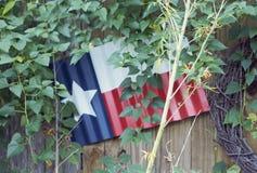Texas flag. Décor in garden stock photo