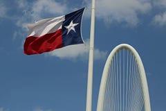 Texas Flag-het fladderen Stock Afbeeldingen