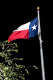 Texas Flag At Night Images libres de droits