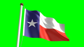 Texas flag stock video