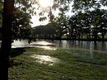 Texas Flooded Creek del oeste Foto de archivo libre de regalías