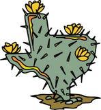 Texas Gevormde Cactus Stock Foto
