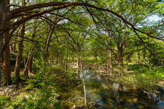 Texas Hill Country. The natural beauty of the Texas Hill Country in the small town of Wimberley Royalty Free Stock Photography