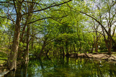 Texas Hill Country. The natural beauty of the Texas Hill Country in the small town of Wimberley Stock Photo