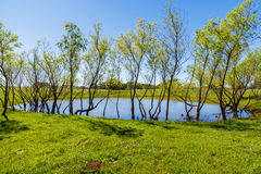 Texas Hill Country. Pretty little pond on a ranch in the Texas Hill Country Stock Photo