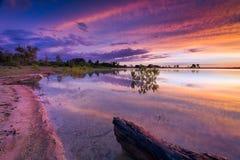 Texas Lake Sunrise royaltyfri fotografi