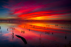 Texas Lake Sunrise Stockfoto