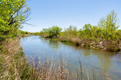 Texas Llano River foto de stock royalty free