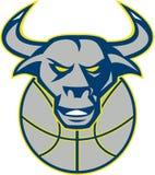 Texas Longhorn Bull Head Basketball Arkivbilder