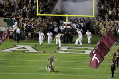 Texas A&M Aggies. Aggie mascot Revelle leads Texas A&M onto the field at Kyle Field in College Station Texas Royalty Free Stock Image