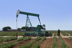 Texas oil well. A nodding donkey type pumpjack at an oil well in a Texas farm field royalty free stock photo