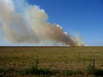 Texas Panhandle out of control wildfire burning on ranch. With cattle royalty free stock photography