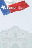 Texas Pride Imagen de archivo libre de regalías