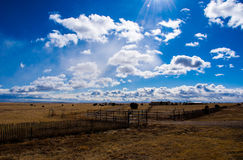 Texas Ranch Amarillo High Lands of Lone Star State. With miles of fences and the amazing deep blue sky and clouds showing off the amazing power of the sun stock images