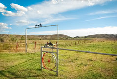A Texas ranch. Royalty Free Stock Images