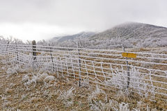 Texas Ranch in una tempesta di ghiaccio Fotografia Stock