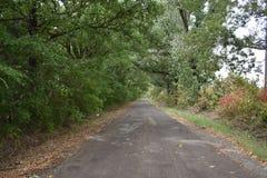 Texas Road do leste fotos de stock
