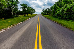 Texas Road with Wildflowers on Side. Paved Texas Road with Wildflowers Growing on the Sides Stock Image