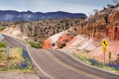 Texas Roads im Frühjahr Blühendes bluebonet Große Biegungs-Ranch, Nationalpark lizenzfreie stockfotos