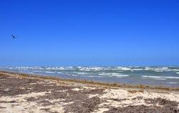 Texas Seascape del sur Imagen de archivo libre de regalías