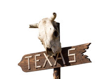 Texas sign with Old horse skull Royalty Free Stock Image