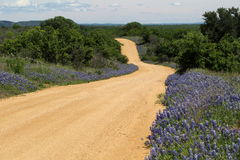 Texas Spring Stock Photo