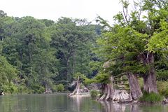 Texas-szenischer Fluss Stockbild
