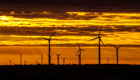 Texas Wind Energy Turbines attraverso l'alba Immagine Stock Libera da Diritti