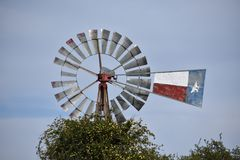 Texas Windmill och gul jasmin i tolaren Texas Royaltyfri Foto