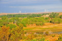 Texas Windmills with Blue Sky and Golden Waves of Native Grasses. S Stock Photos