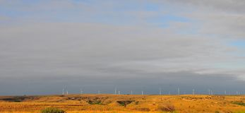 Texas Windmills with Blue Sky and Golden Waves of Native Grasses. S Stock Photo