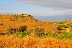 Texas Windmills con el cielo azul y las ondas de oro de hierbas nativas imagen de archivo libre de regalías