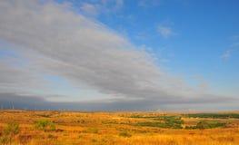 Texas Windmills con el cielo azul y las ondas de oro de hierbas nativas foto de archivo