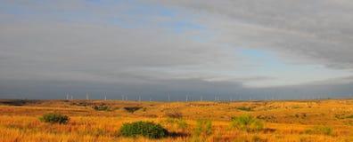 Texas Windmills con el cielo azul y las ondas de oro de hierbas nativas foto de archivo libre de regalías