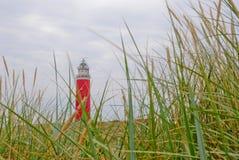 Texel latarnia morska fotografia royalty free