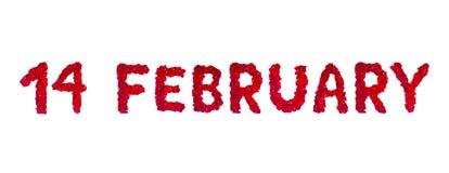 Text 14. Februar der rosafarbenen Blumenblätter getrennt auf Weiß Lizenzfreies Stockbild
