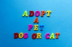 Text adopterar en husdjurhund eller katt från plast- kulöra bokstäver på blå pappers- bakgrund royaltyfri foto