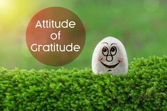Attitude of gratitude. The text attitude of gratitude with stone smile happy face on green moss and sunshine light background royalty free stock images