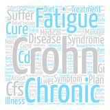 Text Background Word Cloud Concept. Crohns Disease Chronic Fatigue Syndrome Is There A Cure Word Cloud Concept Text Background royalty free illustration