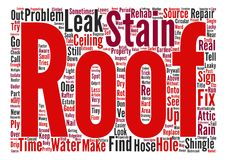 Text Background Word Cloud Concept. The Truth About Roofs text background word cloud concept Royalty Free Stock Photography