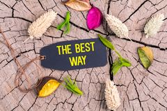 The text the best way in tag royalty free stock images