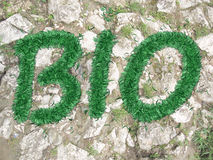 Text bio of the grass Royalty Free Stock Images