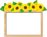 Text board of the sunflower Royalty Free Stock Photo