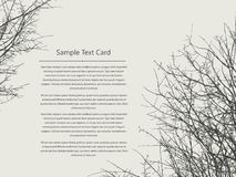 Text card  tree Stock Photography
