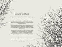 Text card  tree Stock Photography